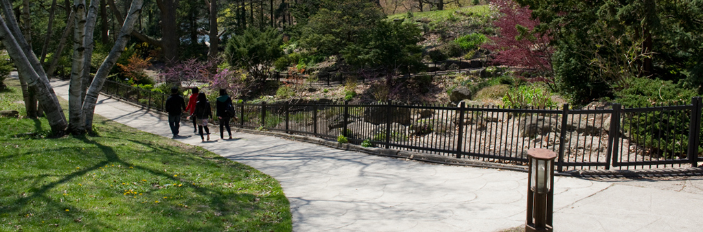 People walking along a pathway lined with trees and fencing at High Park.