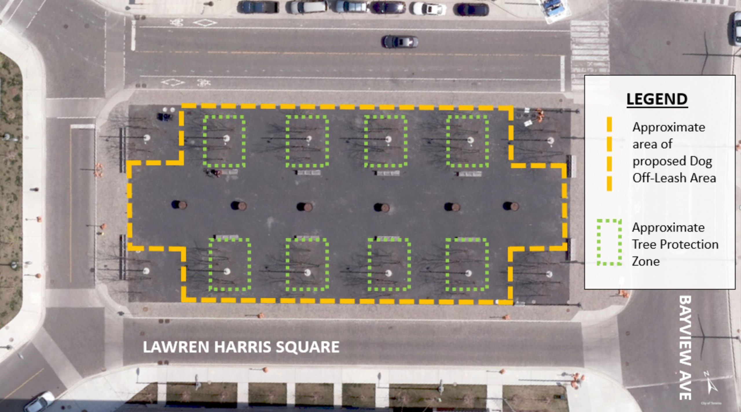 Approximate area of a potential dog off leash area in Lawren Harris square would include most of the square except for the treed corners. Each tree within the square would be fenced off as part of the required tree protection zones.