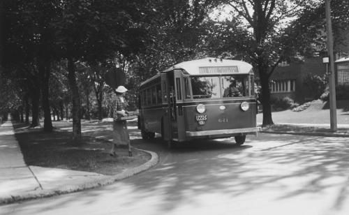 Woman boarding bus on tree lined road