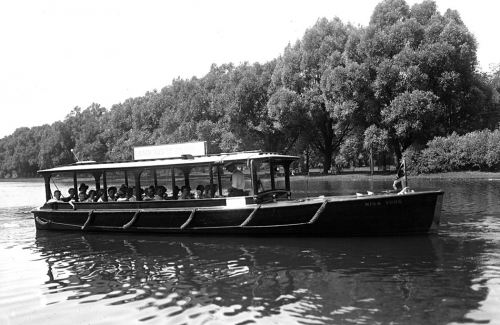 A small sightseeing boat with large open windows and a roof glides past trees on a shoreline.