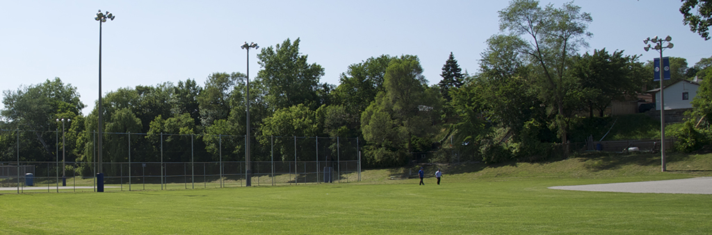 A field at Smythe Park on a sunny, summer day. The grassy ground is level and open.