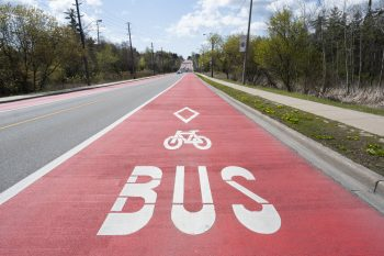red painted rapidTO bus lane.