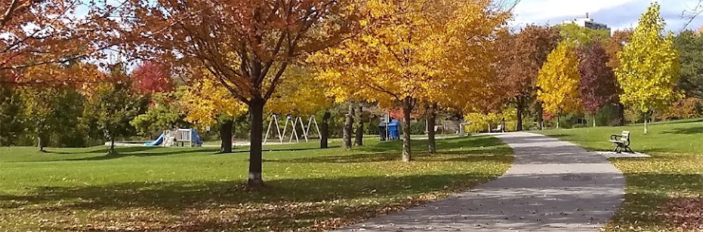 A photograph of Underhill Park on an autumn day with the playground in the distance. Trees and grass surround the playground and a concrete curved path is in the middle of the park.