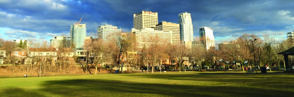 A view of Yonge-Eglinton Centre including houses and office and residential towers from tree lined Eglinton Park