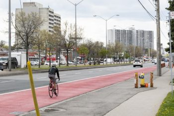person cycling in the rapidTO bus lane.