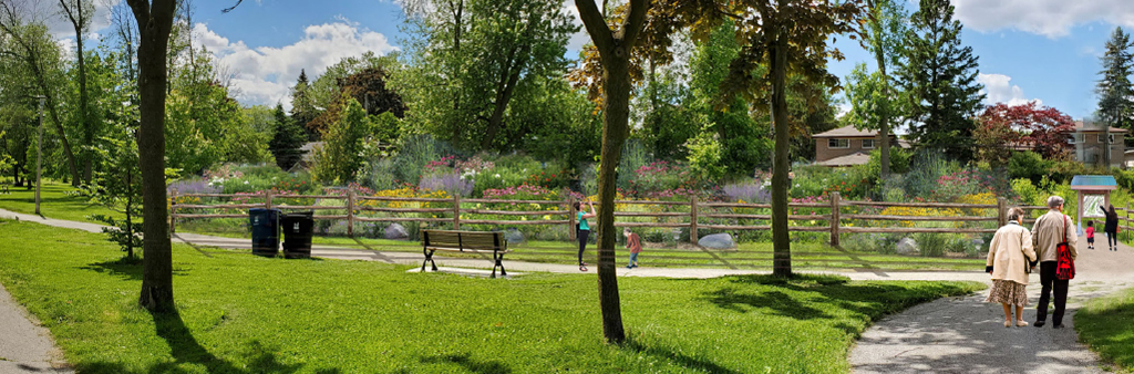 An artist's rendering of the proposed pollinator habitat in Guildwood Village Park, looking west. The image shows the garden in the distance, with three pathway connections in the foreground with pedestrians walking.