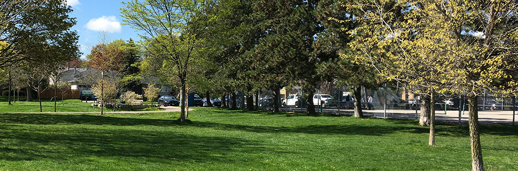 A photograph of Silver Creek Park taken on a sunny day. The park features mature trees throughout an open lawn area.